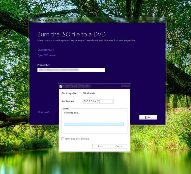 Make a DVD or save it on USB: Upgrade Assistant includes a built in DVD burner.