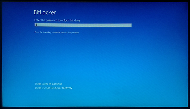 Unlocking a boot drive on start up. You won't see this if you use TPM or a thumb drive.